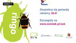Zaopiekuj_sie_gwiazda_reklamy_36i6